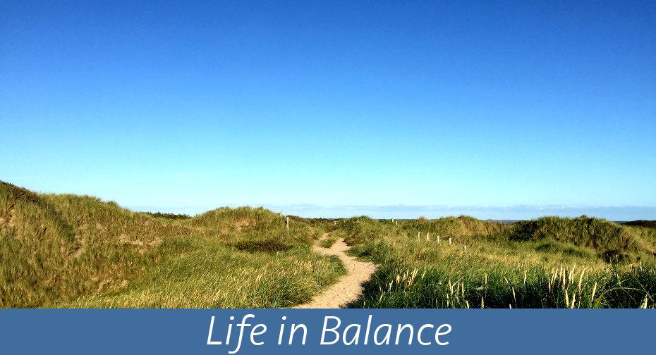 Life in Balance2